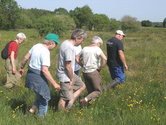 Per Jørgensen køber jord, som han passer og plejer, indtil orkidéer og andre fine planter atter skyder op. Med lys kasket fører han os ud over engen (Foto: Carsten Hunding)