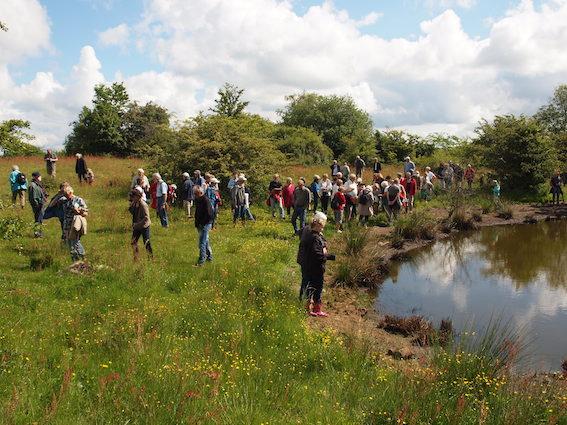 De Vilde Blomsters Dag blev i 2010 et sandt tilløbsstykke i Rødme Svinehaver med mere end 100 beundrere af flere tusinde Guldblomme og Fyns største bestand af Plettet Gøgeurt (Foto: Carsten Hunding)